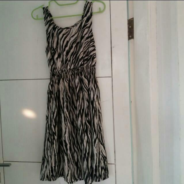 zebra dresa