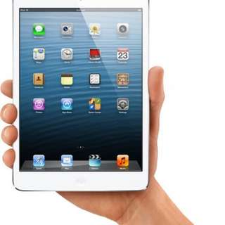 iPad Mini 1 - WiFi Only - 64GB