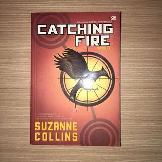 Novel catching fire indo vers.