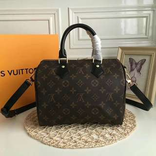 Louis Vuitton Speedy 25 World Tour