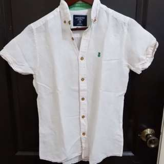 Springfield Mens Button Down