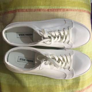 Authentic Steve Madden Sneakers (White)