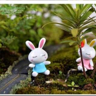 Terrarium Miniature : A pair of Rabbit