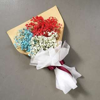 Rainbow Baby Breath for Valentines Day