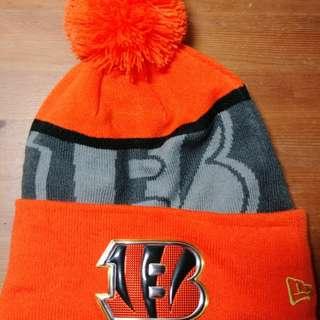 Cincinnati Bengals (NFL)
