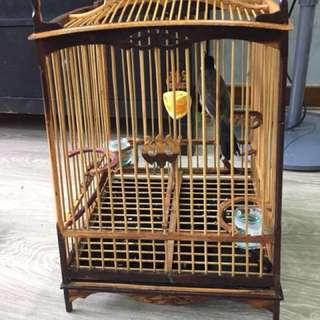 15 stick Thai Sq Cage