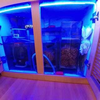 鱼缸/Laguna pj9000 上水泵+过滤生物環