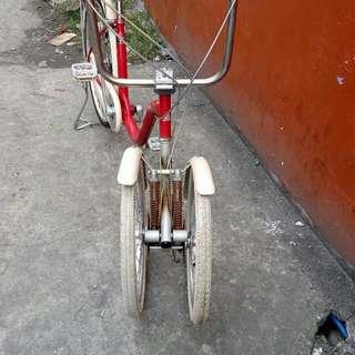 Japan Tri Bike