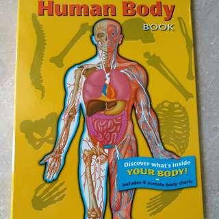 英文書 認識人體The Human Body