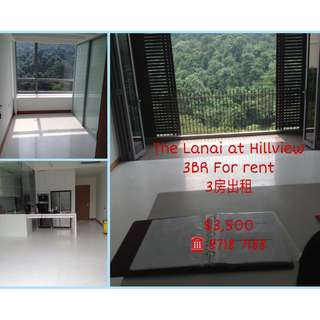 [3BR WHOLE UNIT FOR RENT] The Lanai, Hillview
