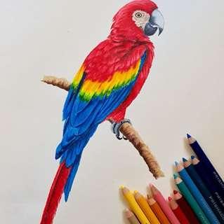 Hand painted custom artwork