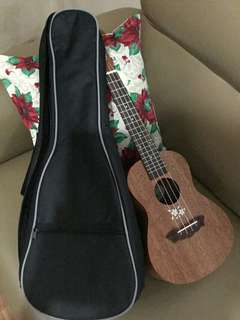 Brandnew Ukelele w/ padded bag for sale