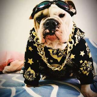 Here Comes The Son of the Mafia Boss Rocker Dog Clothing