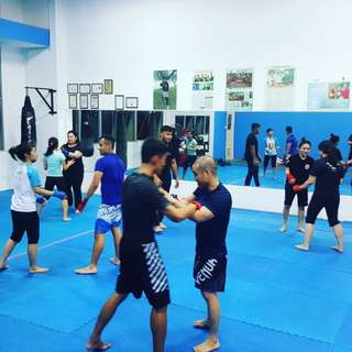 MUAY THAI / MMA