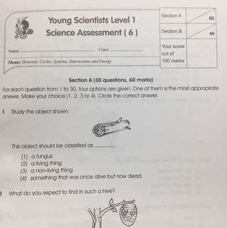 Quiz from level 1 YG