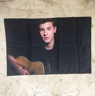 shawn mendes pillow case
