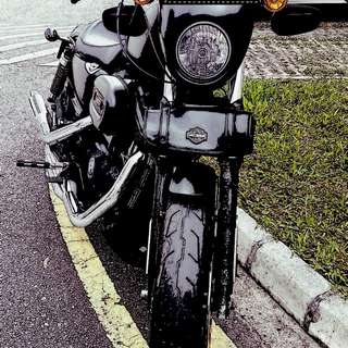 Harley Davidson 883 Iron for sale