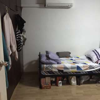 Looking for 1 female malaysian chinese tenant