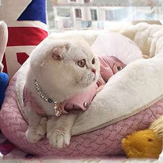 厚實軟軟保暖貓寶睡窩 寵物用品