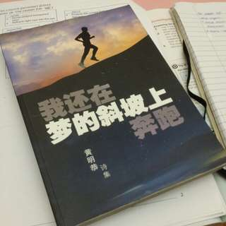 Chinese book on poems