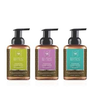 Soapnut Republic Hand Wash Trio Bundle