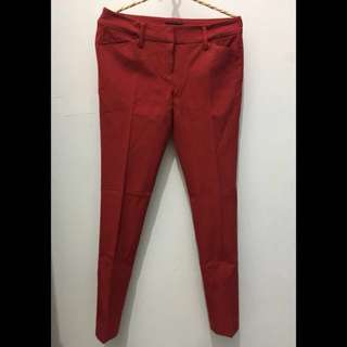 The Executive Red Jeans