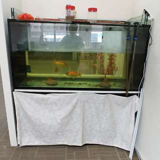 5x2x2 Aro fishtank, stand and 3 gold/ koi mix fish to clear