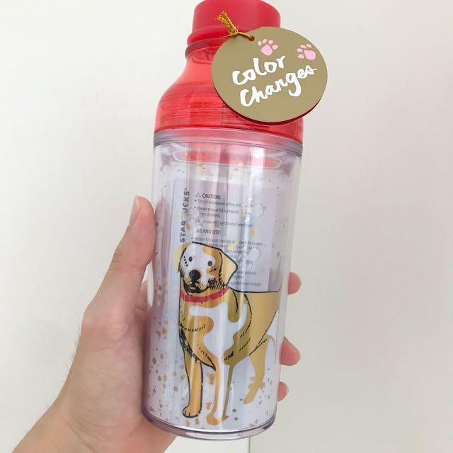 Starbucks Dog Golden retrievers plastic tumbler