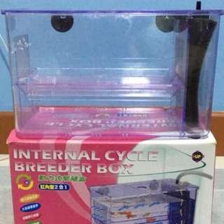 Internal breeding box
