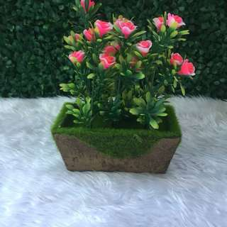 Artificial plant with brown holder