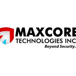 Sales Executive for Security System Company