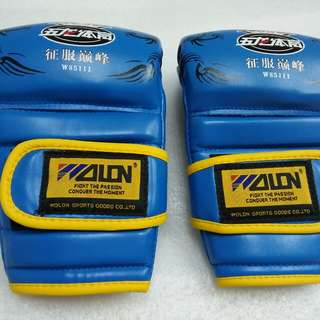 Gloves M3 Blue Wolon MMA