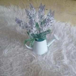 Bunga Lavender + Pot Bunga