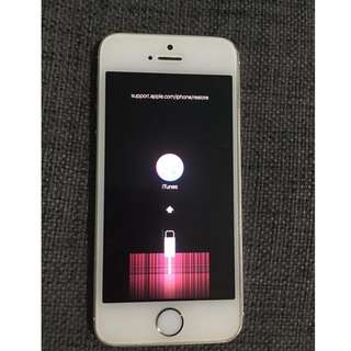 iPhone 5S Gold iTunes Error