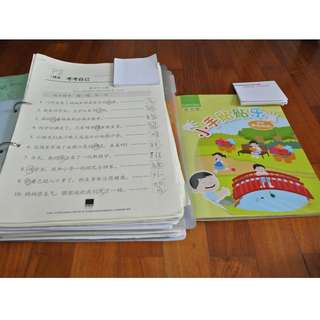 Chinese Berries 2015 P2 full year materials
