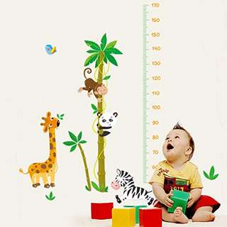 Panda Giraffe Zebra Monkey Height Measurement for Kids Wall Paper