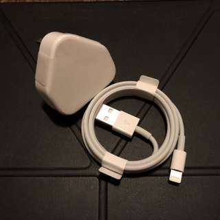 Apple lightning cable&charger