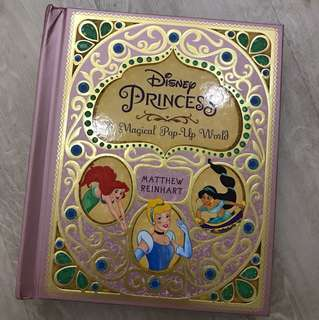 Disney Princess A Magical Pop Up Book by Matthew Reinhart