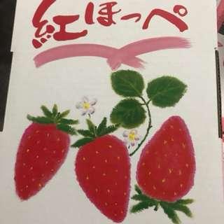 爱媛紅臉士多啤梨20/24玉(禮盒)