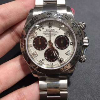 全新Rolex 116509 Panda 已停產款