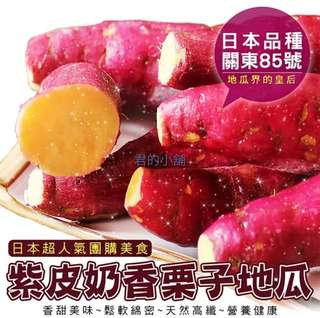 栗香地瓜日本人氣美食