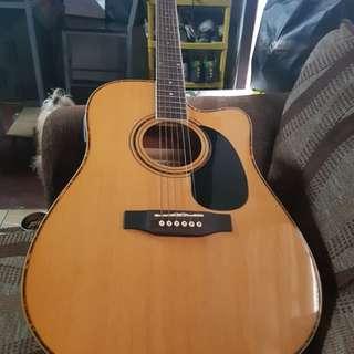Acoustic Fernando Guitar