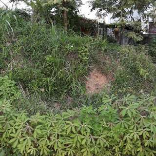 For Sale: Residential Vacant Lot Location: Parkridge Estate Antipolo