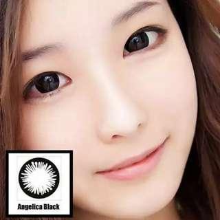 Black Contact Lens La Wink Instocks