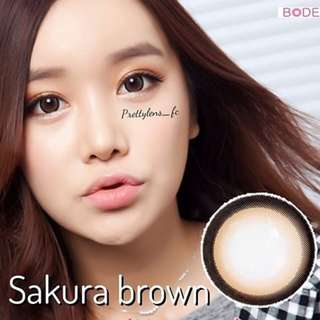 SAKURA BROWN CONTACT LENS INSTOCKS