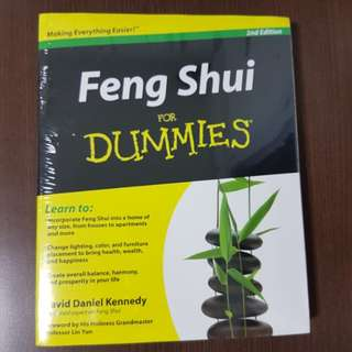 BN Feng Shui for Dummies