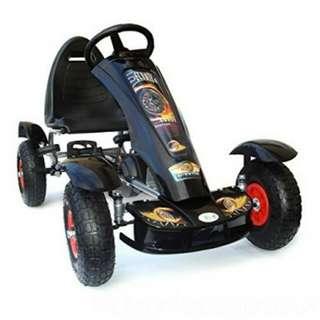 Go kart with mudguard