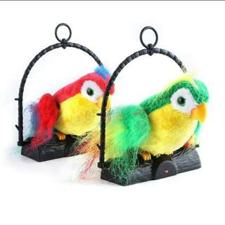 Talking Parrot toy