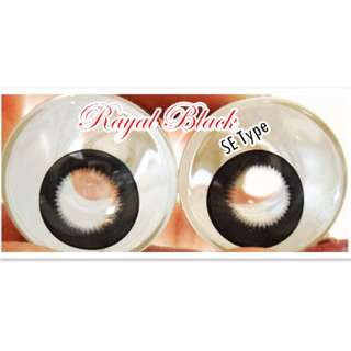 Contact lens - Royal