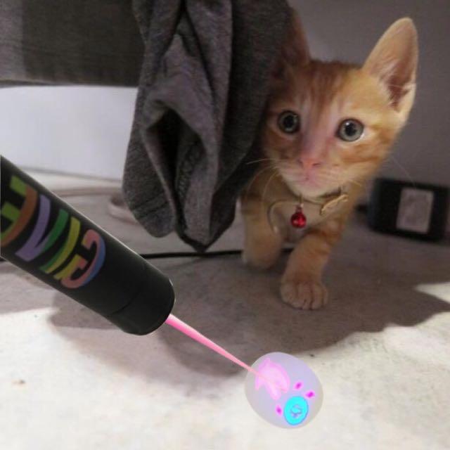 agnes b RUE de MARSEILLE sport b恐龍LED鐳射燈 逗貓棒玩具 逗貓筆